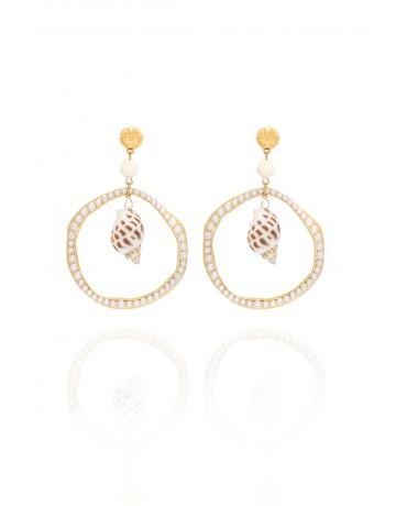 Hoop sea shell earrings